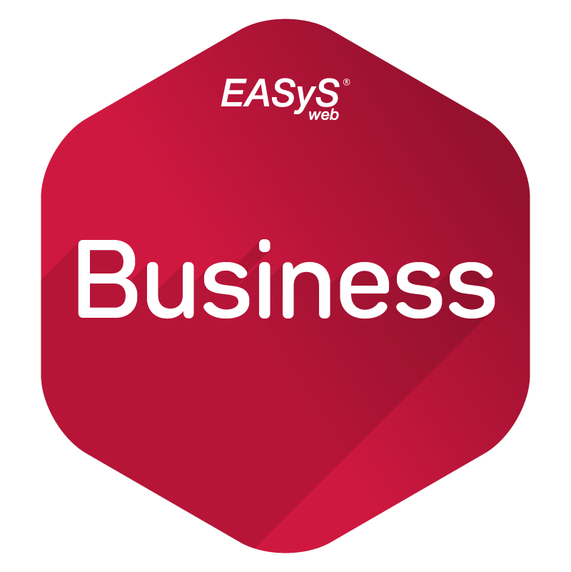 easys-web-business